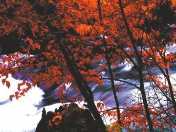 米亚罗风景区 带给你秋日的气息(图)