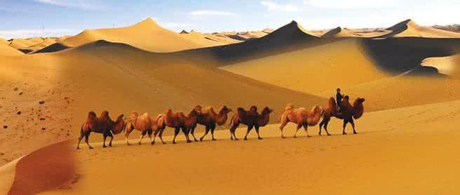 陕西4A、5A景区全部接入智慧旅游平台